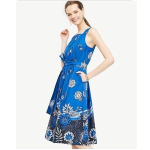 Ann Taylor Tie Waist Blue Floral Poplin Dress
